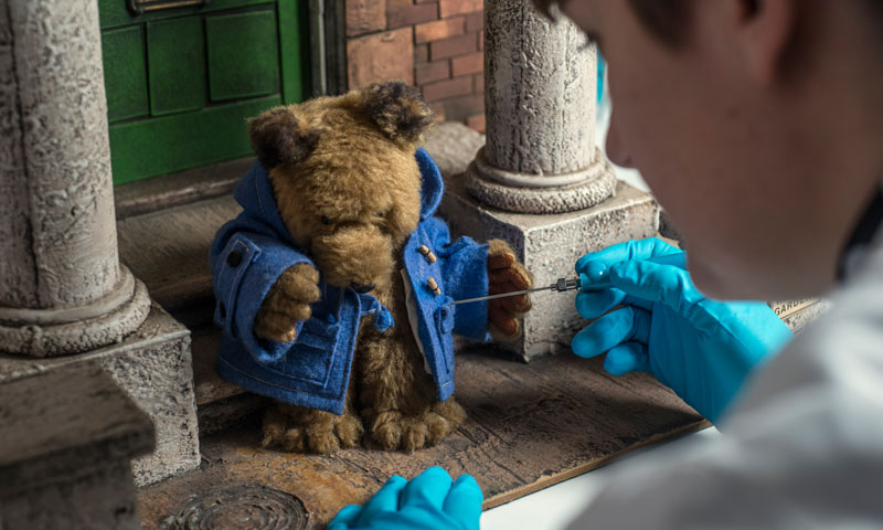 Small Paddington Bear being cleaned by a conservator