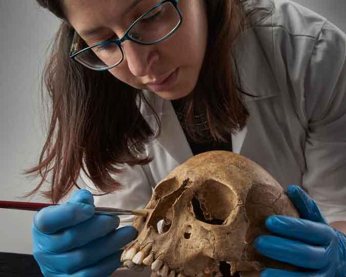 Roman Dead skull