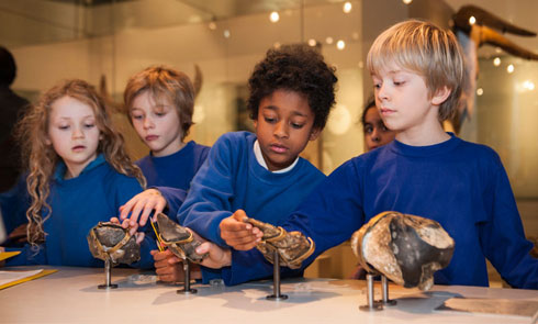 School children looking at objects