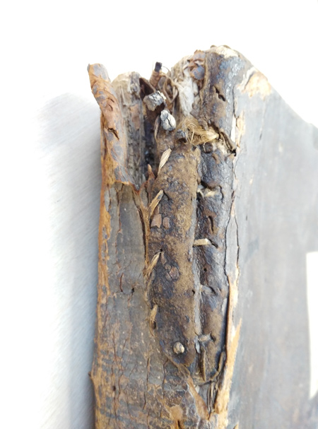 The spine of a 17th century bible, reputedly burnt during the Great Fire of London.