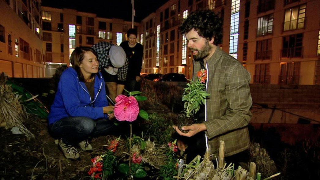 'Guerilla gardener' Richard Reynolds plants flowers and vegetables in neglected urban spaces, re-greening south London.