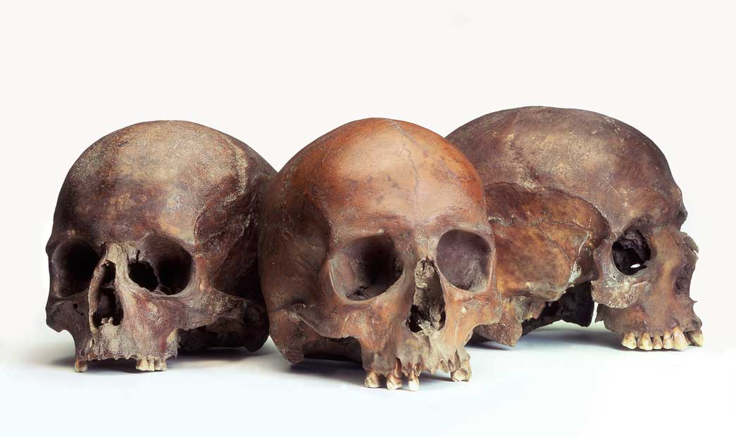 Group of Roman human skulls. Numerous human skulls (without any skeletal remains) have been found in the Walbrook stream. These may have been deposited there as religious offerings to British water gods.