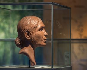 The reconstructed head of one of London's oldest residents is displayed next to her skeleton. This Neolithic hunter-gatherer is named after the location of the gravel pit where she was buried, between 5640 and 5100 years ago.