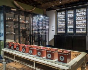 Sampling cases interactive in the Warehouse of the World gallery.
